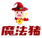 魔法猪一键重装系统