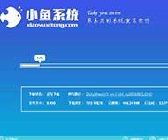 小鱼一键重装系统大师下载简体中文版4.3.9