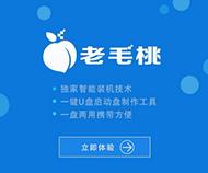 老毛桃一键重装系统软件汉化版6.9.10